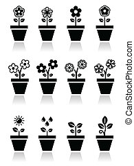 Flower, plant in pot vector icons - Nature icons - one, and...
