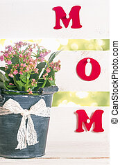 Flower pot and the word mom