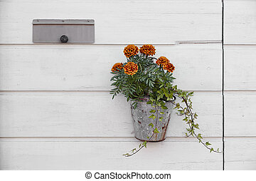 Flower pot hanging on a white wooden wall. Decoration set
