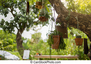 Flower pot is hanging on the tree