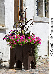 Flower pot with flowers in the old city of Tallinn
