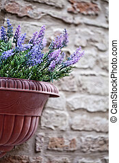Flower pot with lavender plant on antique brick wall