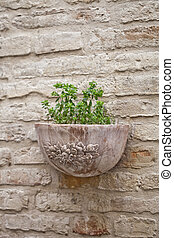 Flower pot with plant on antique brick wall.