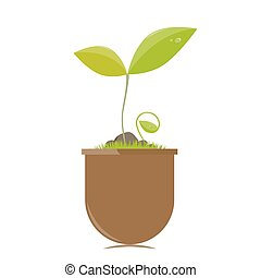 Flower pot with plants