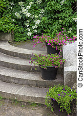 Flower pots decorating stone steps in a garden