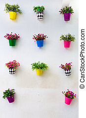 Flower pots on wall