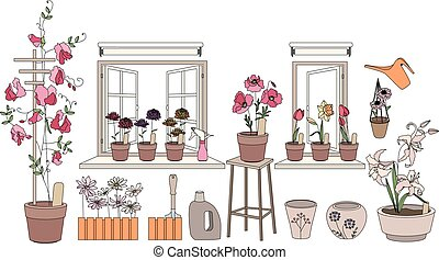 Flower pots with herbs and vegetables. Plants growing on window sills and balcony