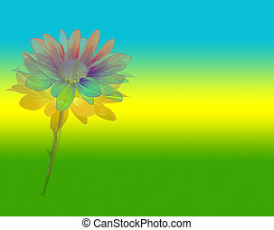 Flower Power - psychedelic daisy on bright rainbow...