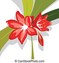 Flower red Lily, vector valotta