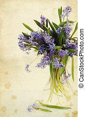 flower scilla in vase, vintage