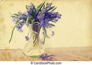 flower scilla, vintage