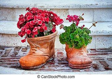 flower-shaped, chaussures, et, fleurs