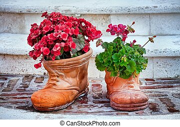 Flower-shaped shoes and flowers - Flower-shaped shoes with...