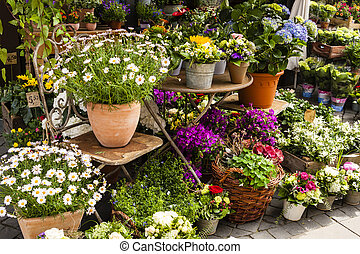 Flower-shop on the street with a lot of different flowers