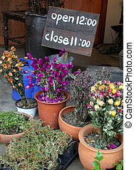 Flower shop - Pots of flowers at a flower shop with sign...