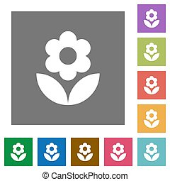 Flower square flat icons