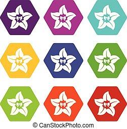 Flower star icons set 9 vector