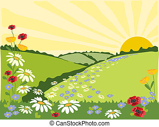 hand drawn illustration of a summer landscape with green fields, flowers and a sunburst