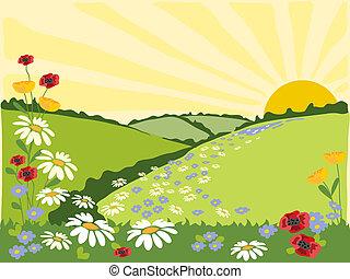 flower trail - hand drawn illustration of a summer landscape...
