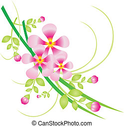 Flower vector - Beautiful flower on a white background. ...
