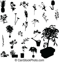 flower vector silhouettes