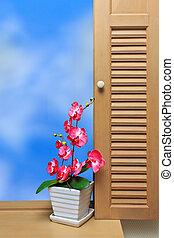 Flower & window