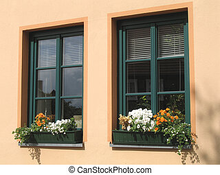 flower windows