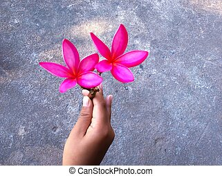 Flower with hand