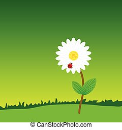 flower with ladybug in the nature color vector