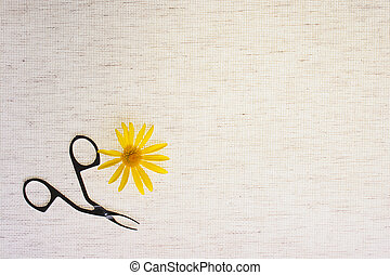 Flower with nippers
