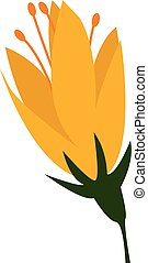Flower with yellow petals vector or color illustration