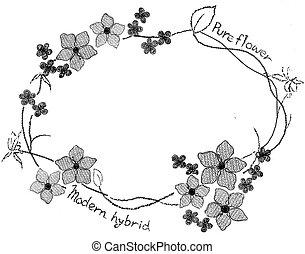 flower, Wreath, floral, frame