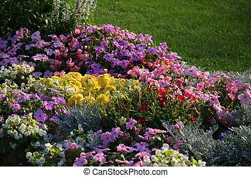 flowerbed.