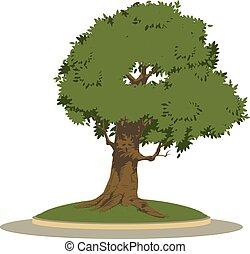 flowerbed., cielna, pień ilustracja, drzewo