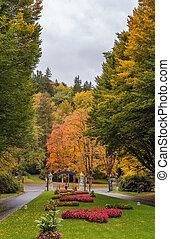 flowerbed in the park, Karlovy Vary