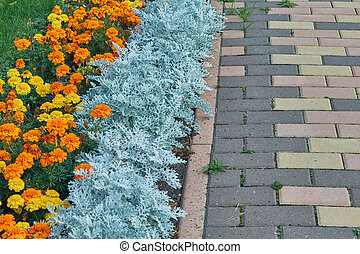 Flowerbed of orange and yellow flowers along the cobblestone pavement.