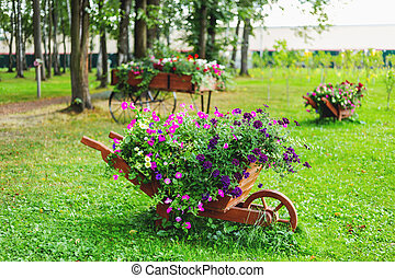 Flowerbed shaped as a wooden wheelbarrow. Garden decoration with Petunia flowers.