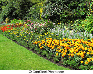 Flowerbed border of marigolds in a park formal garden