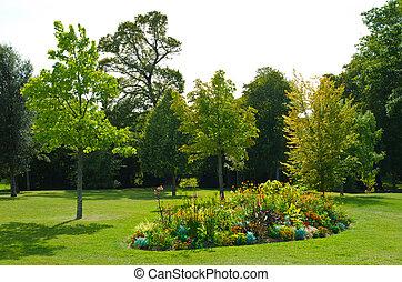 flowerbed - blooming flowerbed in the park