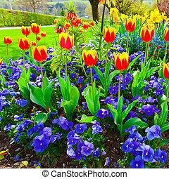 Flowerbed - Landscaped Park with Flowerbed in Switzerland