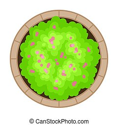 Flowerbed with green plant. View from above. Vector illustration on a white background.