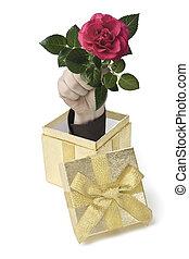 flowerbox - Eine Hand komt aus einer Geschenkebox heraus