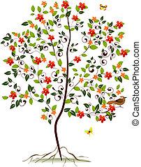 flowering 木, 若い