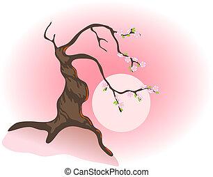Flowering bonsai and the morning sun. Vector illustration