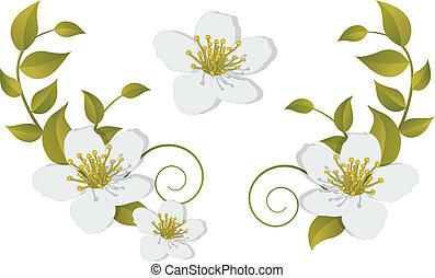 Flowering branch - design elements