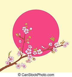 Flowering cherry branch on background of sun