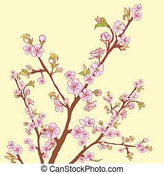 Flowering cherry branch. Vintage background