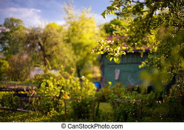 Flowering garden with summer house in spring. Blurry