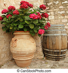 flowering hortensia in elegant ceramic vase in Spello...