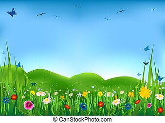 Flowering Meadow - Beautiful flowers and meadow as ...